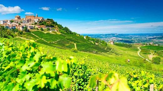 Autunno in vigna, le località più belle d'Italia