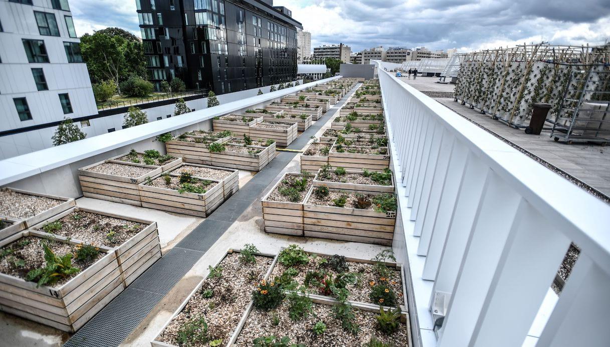 fattoria urbana a parigi