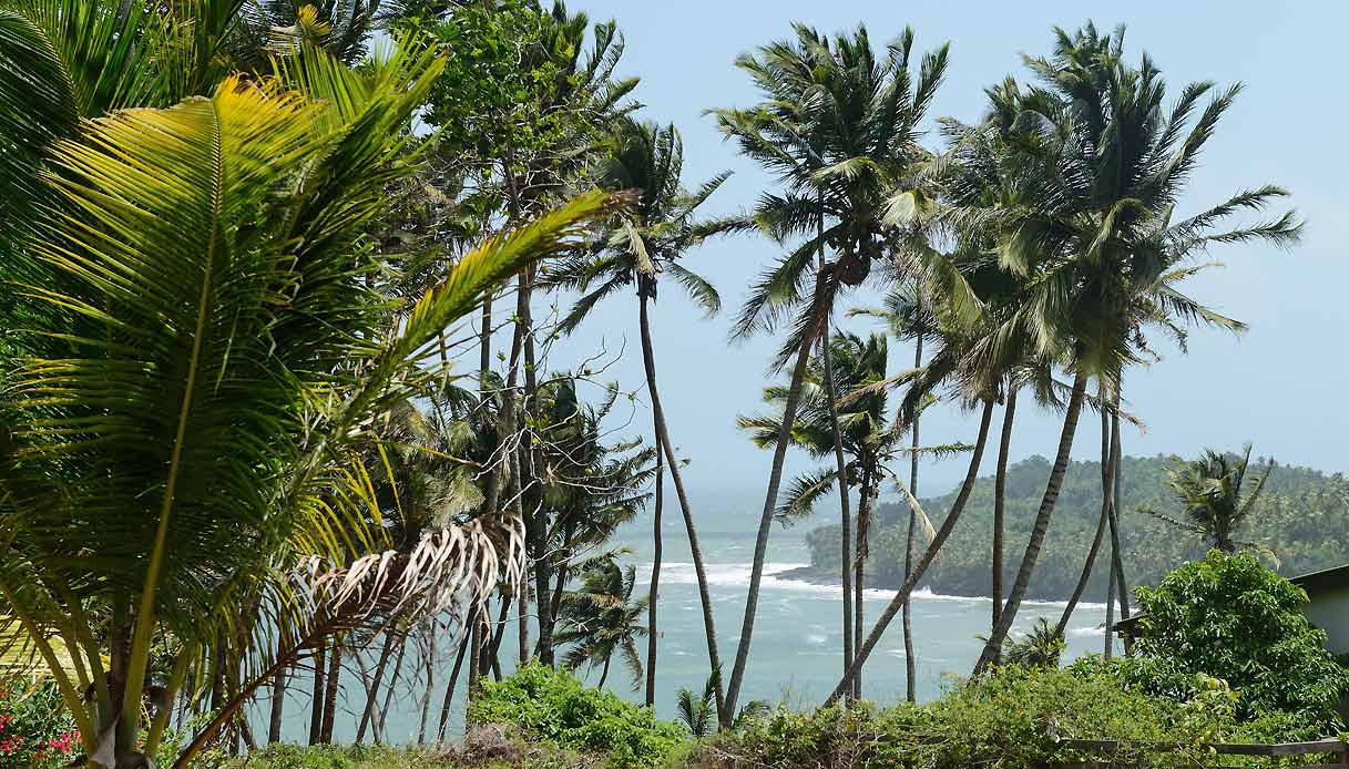 isola-diavolo-guyana-francese-location-papillon