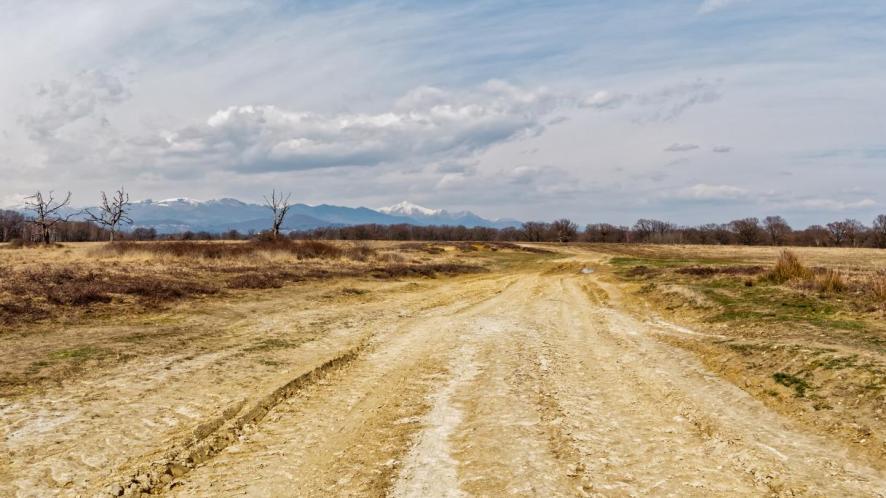"""Alla scoperta della Baraggia, """"l'ultima savana d'Italia"""""""