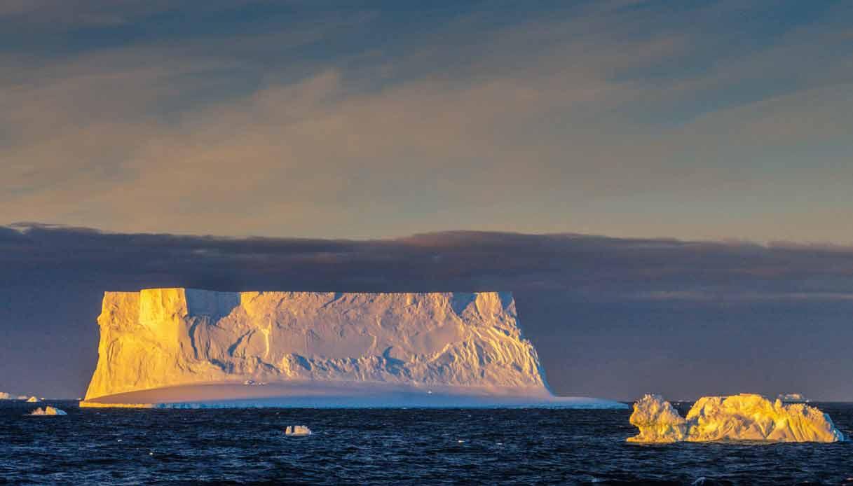 Weddell-antartide