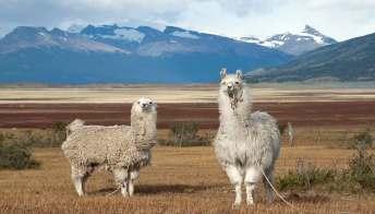 Patagonia Argentina: le tappe che non possono mancare