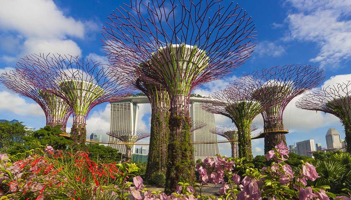 Singapore Virtual Tour