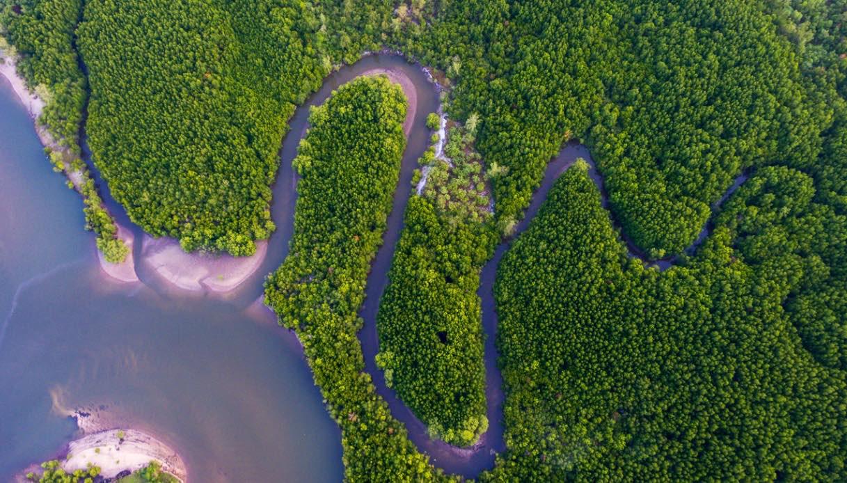 isola del borneo