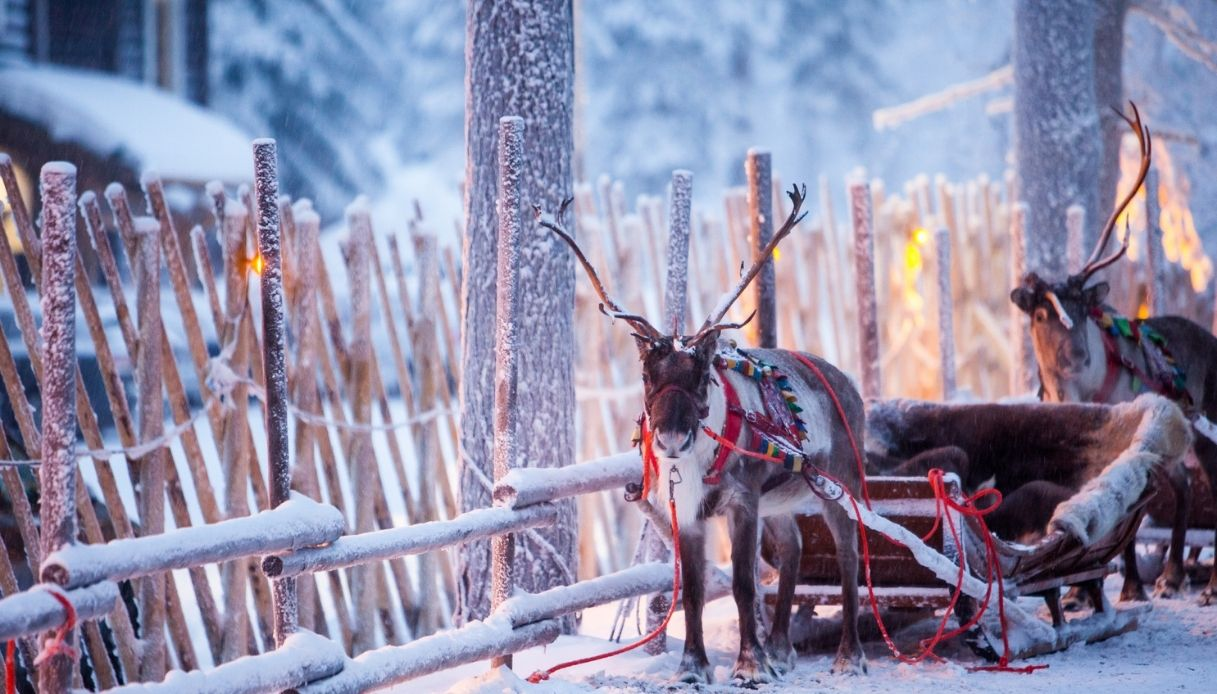 slitta vero Babbo Natale finlandese 2020