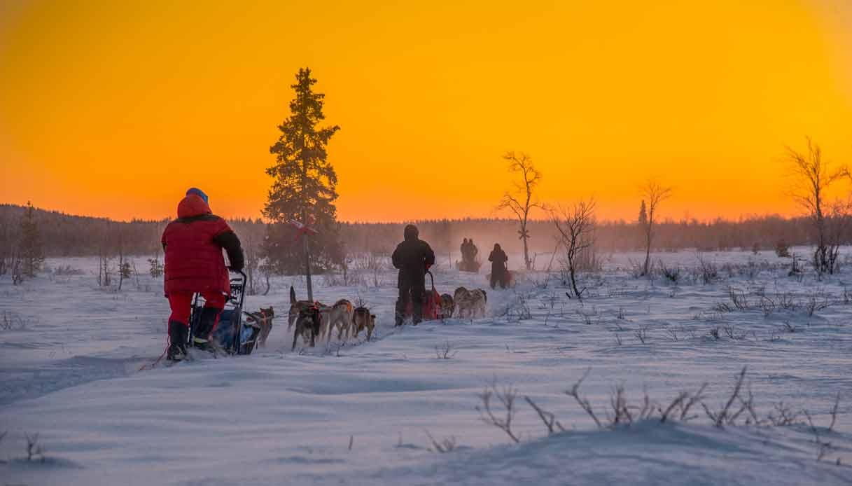 Motoslitta-tramonto-lapponia-svedese