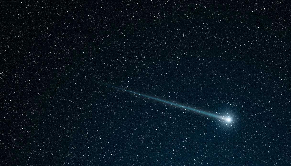 cometa erasmus natale