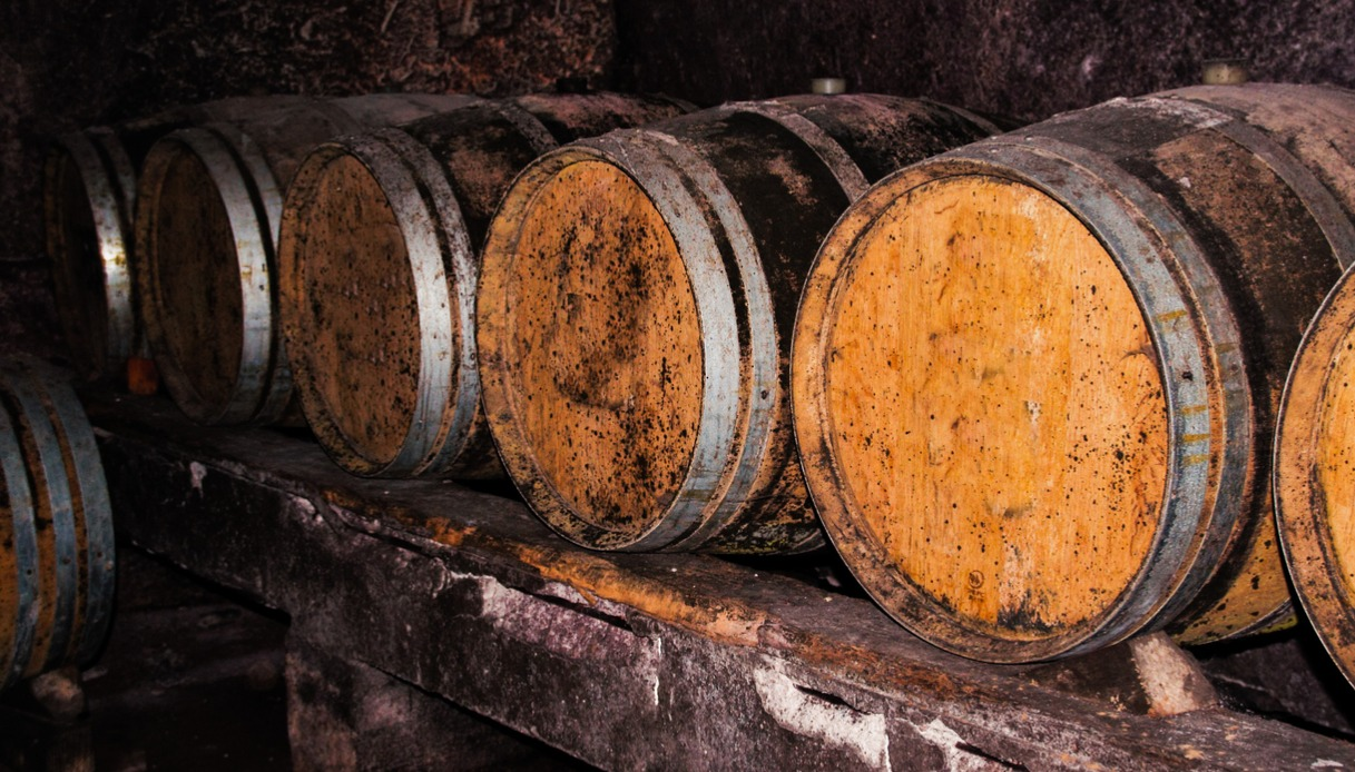 Botti di vino in Irpinia