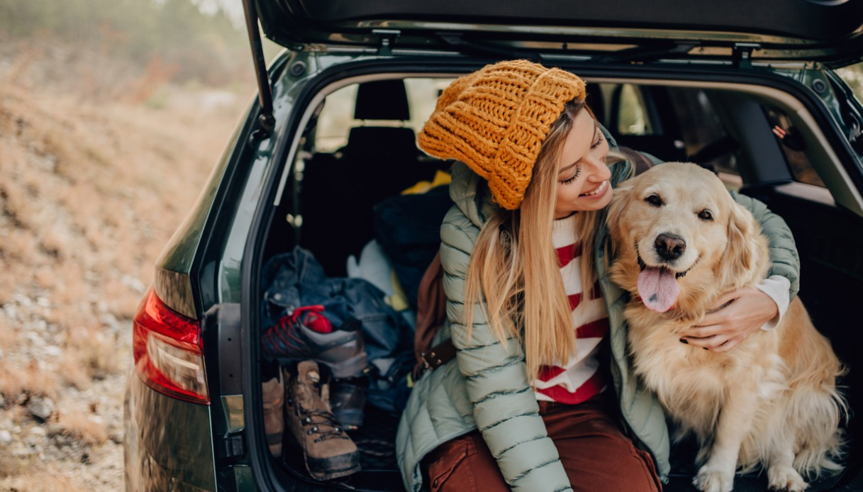 Viaggio con animali