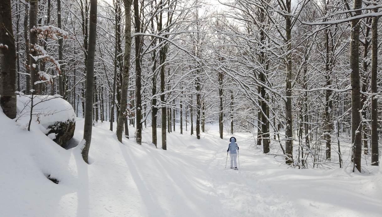 appennino emilia inverno