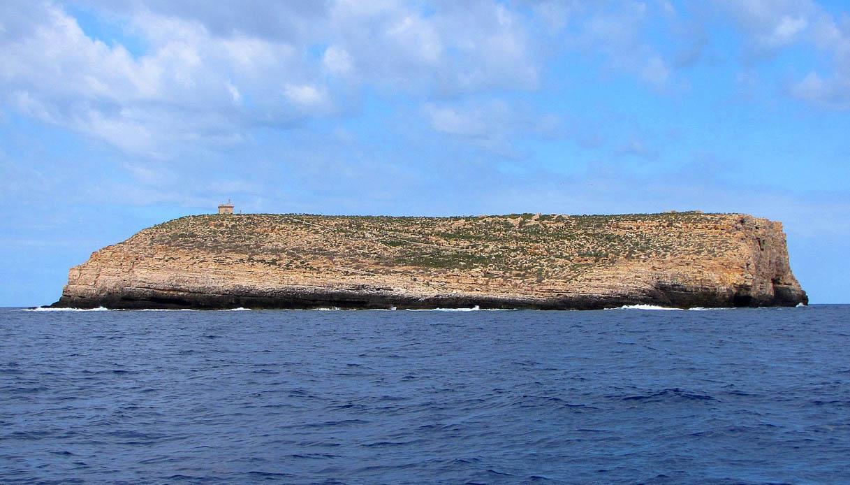 Lampione isola italiana squali