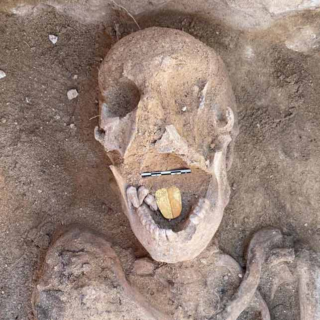 egitto-mummia-lingua-oro