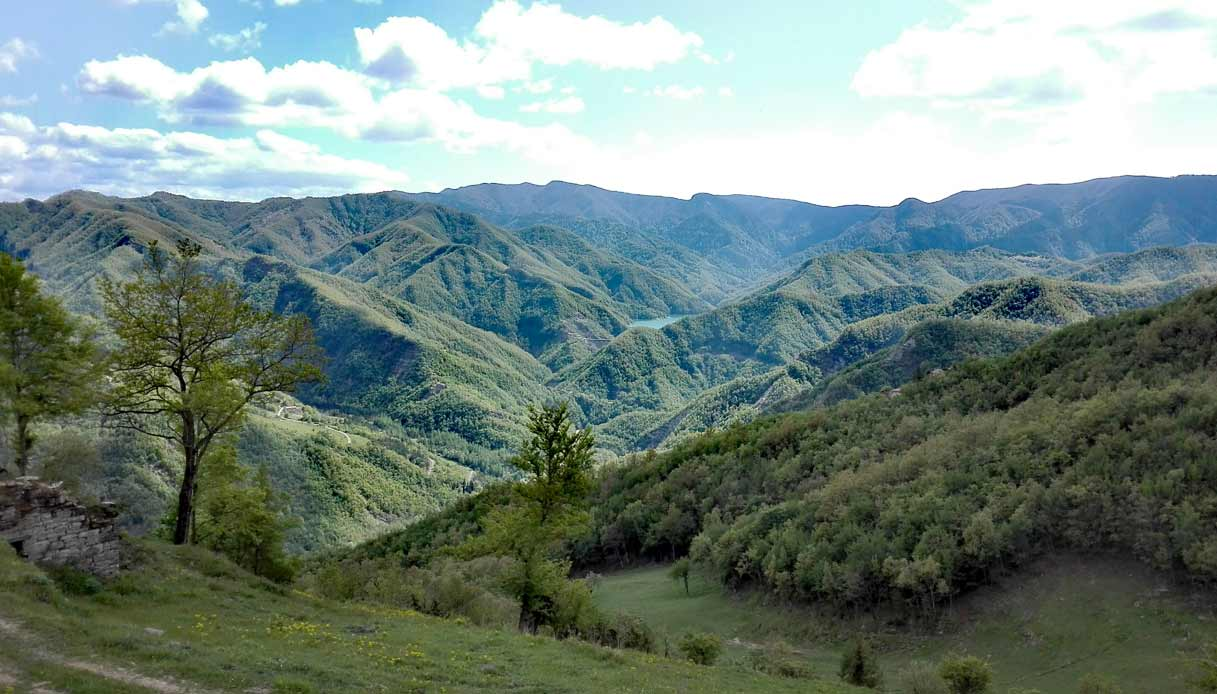 foreste-casentinesi-Poggio_Collina_Valle_di_Ridracoli