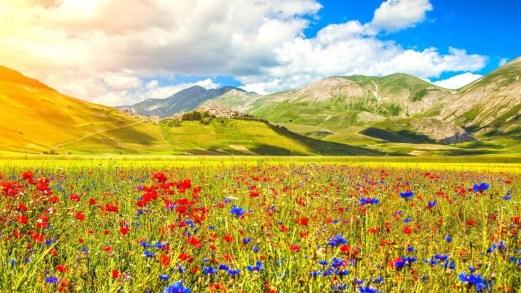 Aspettando la primavera: 10 cartoline dall'Italia fiorita
