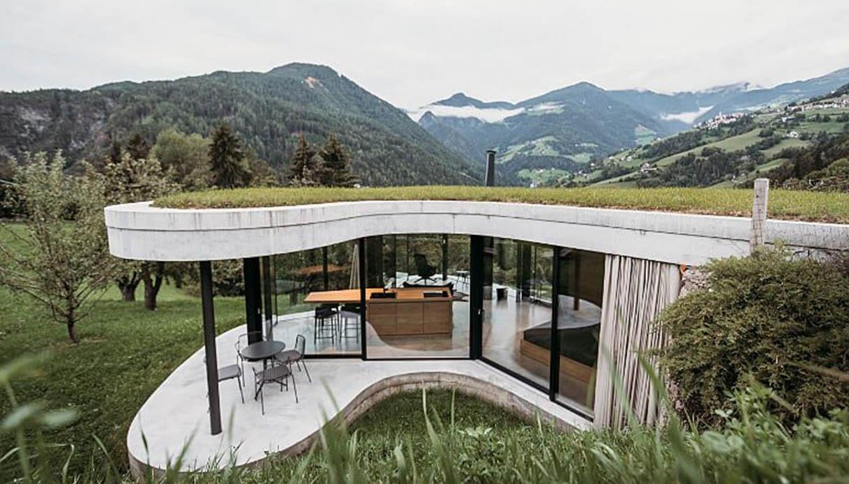 Freiform, guest house