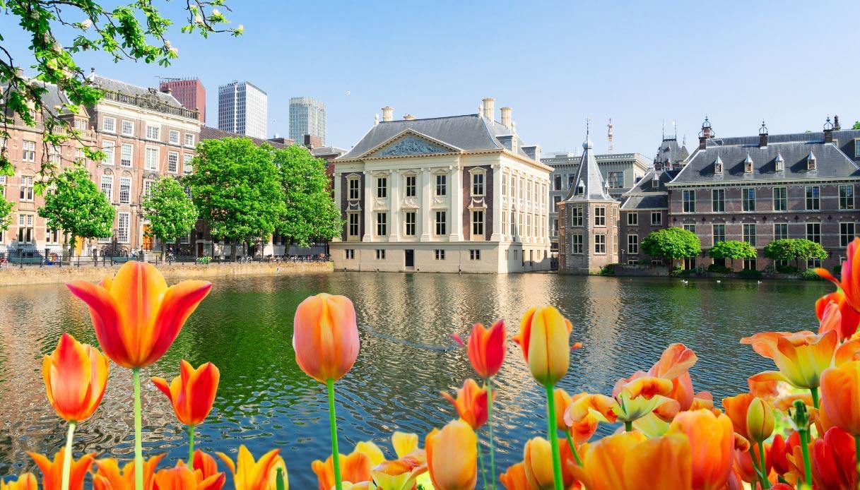 Museo Mauritshuis