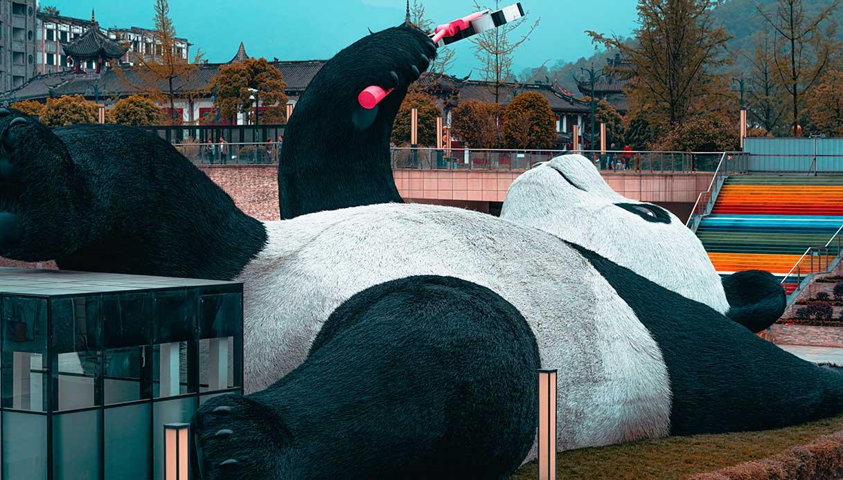 Un panda gigante a Dujiangyan