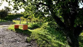 Le panchine sul confine tra Italia e Slovenia per godersi il paesaggio