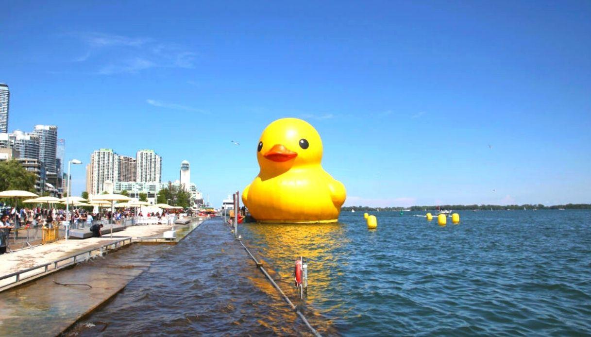 Florentijin Hofman, Rubber Duck