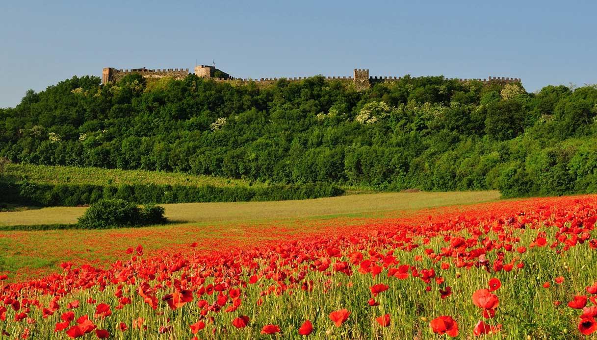 Rocca di Lonato del Garda in fiore