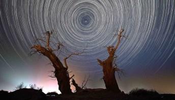 Come la notte stellata: il deserto solitario che sembra un quadro di Van Gogh