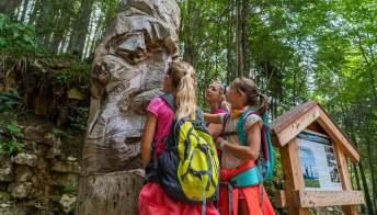 Sei sentieri tematici da fare con i bambini in Trentino