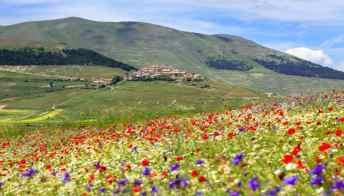 Italia a piedi: quali cammini fare questa estate