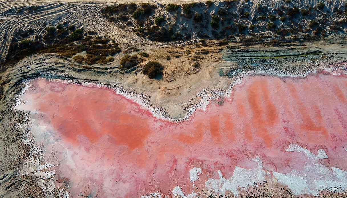 Pink lake in Ras al Khaimah