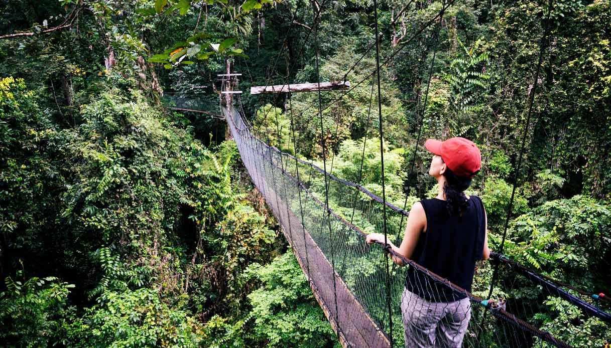 malesia-parco-Gunung-Mulu