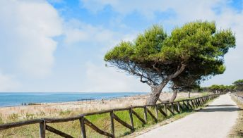 Ciclovia Trieste-Venezia: in bici dal Friuli alla Serenissima
