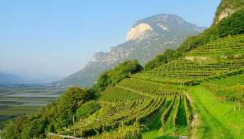 La Strada del Vino e dei Sapori del Trentino