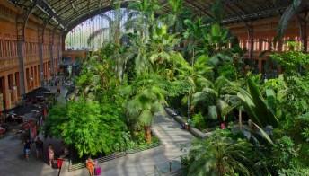 Il giardino tropicale più bello d'Europa è in questa stazione
