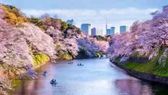 Olimpiadi di Tokyo, le magnifiche località delle gare