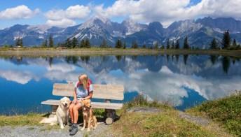 Viaggi pet friendly, le migliori destinazioni in Europa