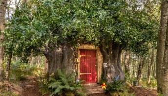 Puoi dormire nel Bosco dei Cento Agri con Winnie the Pooh