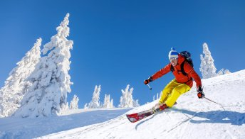 Green Pass obbligatorio per gli sciatori: l'idea per salvare l'inverno