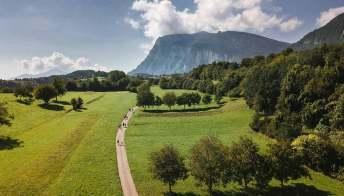Dal trekking al forest bathing, all'ombra delle Dolomiti