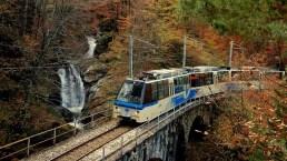 """Torna il """"Treno del foliage"""", lo splendido itinerario autunnale"""