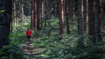 Il futuro dei viaggi è il benessere psicofisico: le esperienze migliori da fare in Europa