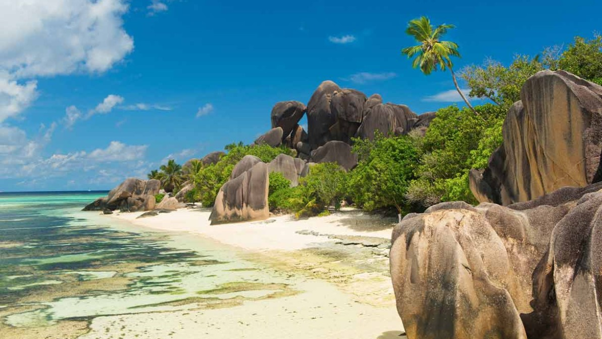 Ritorno ai tropici