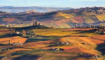 Tra le colline e i boschi del Nizza, nel Monferrato, Patrimonio Unesco